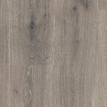 Дуб Горный Серый, Планка L0101_01802