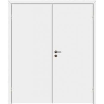 Дверь противопожарная звукоизоляционная EI30/30dB двупольная
